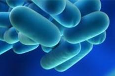 Legionellapreventie Image