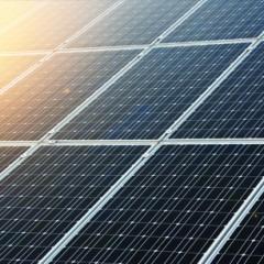 LTO biedt zekerheid met keuze voor Duitse panelen in Vraagbundeling Zonnepanelen