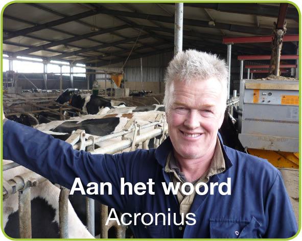 Acronius