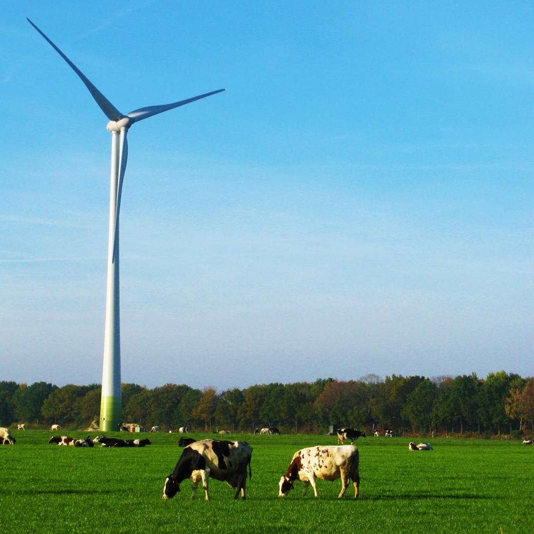Dynamische energieprijzen helpen bij energietransitie