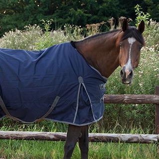 'De dekens kwamen fris en als nieuw terug'