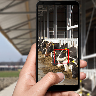 Een smartphone is inmiddels bijna onmisbaar op het bedrijf