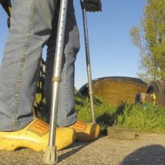 Agrariër onvoldoende beschermd tegen wegvallen inkomen