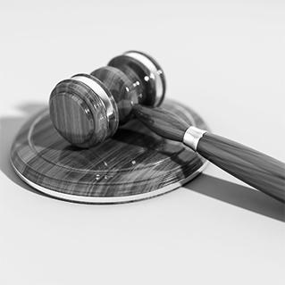 LTO Verzekeringen: ook belangenbehartiger in recht en aansprakelijkheid