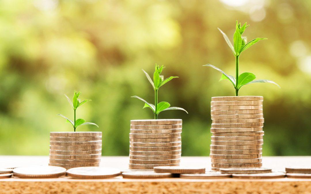 Tot 20.000 euro aan subsidie voor jonge boeren