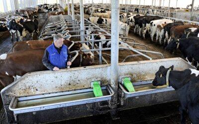 'Schoon drinkwater vee hoort bij duurzaam boeren'