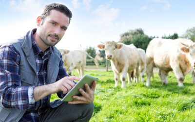 Betrouwbare alarmering met Octalarm voor veeteelt en tuinbouw